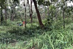 Goundwater sampling in Karnataka forest